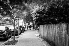 Daytime Blur (pillarsoflight) Tags: blackandwhite bw monochrome beauty oregon 35mm portland prime aperture nikon adobe pdx desaturated 18 pnw lightroom d3300