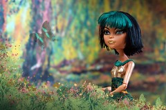 Cleo (Allan Saw) Tags: flowers portrait color colour toy doll mh monsterhigh cleodenile