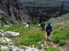 Descending toward Fox Creek Pass from the pass at the head of Upper Darby Canyon (Anne's Travels 4) Tags: wildflowers wyoming tetons grandtetonnationalpark jedediahsmithwilderness darbycanyon upperdarbycanyon