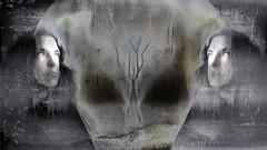 Dont Look Back (Vanessa Vox) Tags: winter selfportrait tree night blackwhite memories dream moonlight selfie skeletontree dontlookback vanessavox