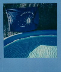 Conch Republic flag at pool (EllenJo) Tags: arizona home yard polaroid polaroid600 2016 may23 instantfilm polaroidjobpro ellenjo colorframe ellenjoroberts impossibleproject theimpossibleproject may2016