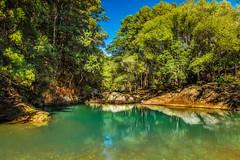 Currumbin Water Hole (jenni 101) Tags: water scenic australia swimminghole gumtrees seqld currumbinwaterhole