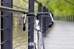 Devinci-2 (O Harris) Tags: bridge canada bikepath bike forest canon outdoors ottawa ottawariver roadbike 2016 devinci