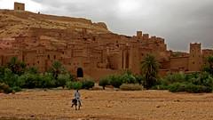 Ait ben-Haddou - Kser (macloo) Tags: building architecture ruins culture morocco kasbah traditonal rammedearth kser pisdeterre