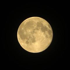Strawberry Moon (edenpictures) Tags: nyc newyorkcity moon yellow manhattan fullmoon unionsquare summersolstice strawberrymoon solsticemoon lunarseas