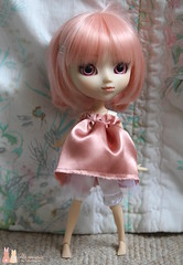 Cutie in Pink (Shamujinn) Tags: pink make up animal rose eyes doll dress robe stock siamese cutie melody wig short groove pullip xs pure tulle custo poupe harmonie mymelody neemo siamoise azone junplanning rewigged customise eyeships shamujinn