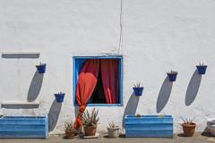 Luz de verano (Carhove) Tags: windows ventana fuerteventura canaryislands islascanarias summer verano light luz shadows sombras