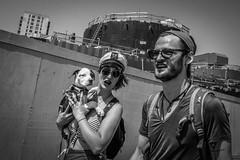 (Damien Sass) Tags: coneyisland people nyc newyorkcity urban raw fujifilm xpro2 blackandwhite bw bigapple beenthere dog puppy pet monochrome reportage streetphotography 28mm 2016 summer mermaid