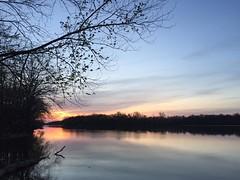98 (webmastermama71) Tags: trees sunset sky sun clouds sunrise evening dusk silhouettes sunsets sunny sunsetting sunshots sunsetphotography silhouettephotography