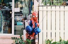 Spider-Man Deflated/Bangkok (35mm) (jcbkk1956) Tags: street film window analog fence thailand costume bangkok balloon spiderman figure superhero manual blowup deflated kodacolor200 thonglo contaxrts 45mmf28