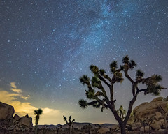 Milk Way Splash (MarcCooper_1950) Tags: milkyway joshuatree astrophotography nightscape desert night stars hdr nikon d810 samyang 14mm f28 longexposure desertsky sunset lightroom