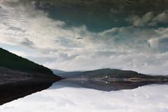 #Dizzy Heights (graceindirain) Tags: lake dizzyheights parachute soundbells lakescape sky reflection texture graceindirain