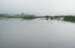 Cerknica Lake (happy.apple) Tags: otok cerknica slovenia si cerknikojezero cerknicalake slovenija landscape morning fog summer megla jutro poletje geotagged