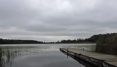 Defiance Lake (mckeenjohn32) Tags: dark overcast lake landscape outdoor watercourse water sky riverbank shore pier dock