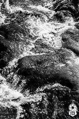 Chaos in the Waters (The.Creativity.Engine) Tags: incredibleindia mtdcofficial maharashtratourism mtdc travelindia blackandwhite bnw monochrome instablackandwhite monoart instabw bnwsociety bwlover bwphotooftheday photooftheday bw bwsociety bwcrew instapickbw bwstylesgf lake water abstract minimal minimalism travel traveling tagsforlikes traveler tflers vacation visiting instatravel instago instagood trip holiday fun travelling photo photos photoshoot pic pics picture photoaday snapshot art beautiful picoftheday color photograph architecture building architexture city buildings skyscraper urban design cities town street architecturelovers lines