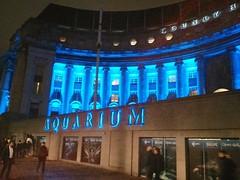 Sea Life London Aquarium (krolyerds) Tags: london 2014 londonnight sealifelondonaquarium