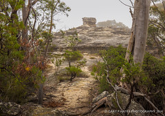 Pulpit Rock View (Gary Hayes) Tags: sydney australia bluemountains valley mountvictoria kanimbla