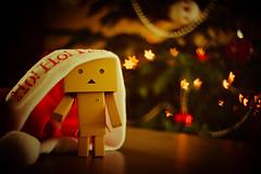 Danbo & Noël-3 (Marc Egensperger) Tags: christmas red rouge lights noël danbo danboard