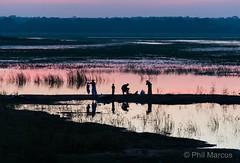 """Sunset Laundry"" - Anuradhapura, Sri Lanka (Phil Marcus Photography) Tags: asia srilanka anuradapura"