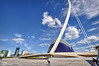 Pont de l'Assut de l'Or i l'Àgora a la Ciutat de les Arts i de les Ciències (CAC). València (Abariltur) Tags: valencia spain cac santiagocalatrava castellón ciutatdelesartsidelesciències nikond90 pontdelassutdelor afsdxnikkor1024mmf3545ged abariltur lágora
