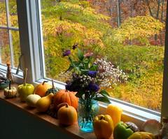 Autumn windowsill (edenseekr) Tags: autumn gourds vegetables fallfoliage windowsill nystate stilllifecomposition