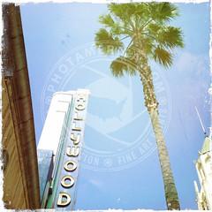 CALIFORNIA-674