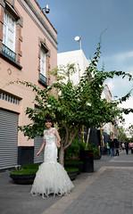 Trasvestidores (Edna aam) Tags: street wedding portrait fashion calle retrato moda airelibre