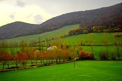 _DSC7197 (andoni.guridi) Tags: autumn fall spain otoño navarra 2014 basaburua