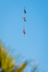 Air Show @ JBR (|MBS-..|) Tags: nikon dubai uae sigma d750 70200mm jbr d4s 150500mm