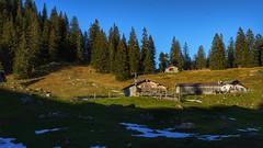 Auf der Weidbergalm, zwischen Hirschberg und Seekarkreuz
