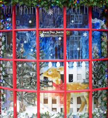 advent 11/24 (Julaquinte) Tags: christmas snow window shop reindeer advent shopwindow warwickshire stratforduponavon 2014