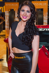 Continental Tire - Las Vegas, NV  USA (Baron von Speed) Tags: woman sexy girl beautiful model pretty lasvegas stingray continental tire chevy sema corvette 2014 reifen boothbabe amymarie mg7811 promogal baronvonspeed