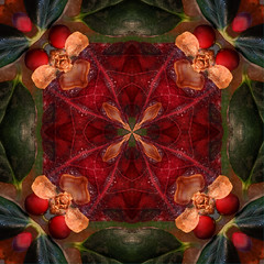 Holiday Season Kaleidoscope