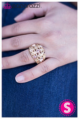 1059_ring-goldkit1april-box01