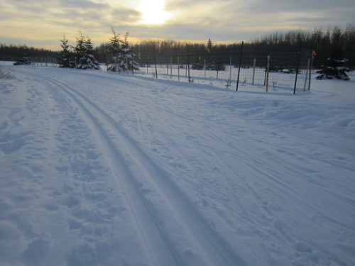 The new ski trail