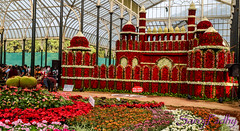 The Red Fort in flower (SarojPadhy) Tags: india flower bangalore lalbagh redfort flowerwatcher