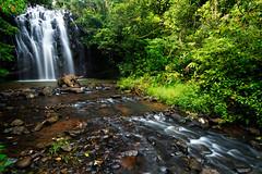 Ellinjaa Falls - Atherton Tablelands (Rob Harris Photography) Tags: nature creek landscape waterfall rainforest stream australia queensland tropical tropics northqueensland