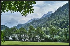 L1001935 - Thumsee, Berchtesgadener Land (Max-Friedrich) Tags: bayern bavaria natur landschaft thumsee berchtesgadenerland leicam8