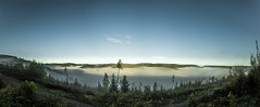 Ocean of fog [Panorama] (gnseblmchen) Tags: trees wallpaper plants tree nature forest landscape landscapes background natur stock pflanzen free creativecommons vegetation wald bume baum dri forests hdr highdynamicrange landschaften lanschaft dynamicrangeincrease wlder