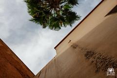 Tombe Sa'diane (andrea.prave) Tags: morocco maroc marocco marrakech marrakesh tombe cimitero mausoleo tombeauxsaadiens tombeaux mausole saadiens  almamlaka   tombesadiane visitmorocco almaghribiyya  tourdelmarocco sadiane