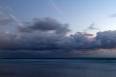 blue (fleatovic) Tags: beach water sunrise miami amanecer miamibeach gaviota