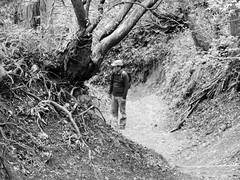 Shashin - DSCN4595 (Mathieu Perron) Tags: life city bridge people bw white black monochrome japan nikon noir perron hiking daily nb journey rokko  mp mont blanc japon personne ville gens vie mathieu   sjour randonne trecking     quotidienne      p520   zheld