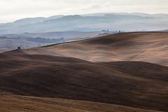 _MG_5838 (stefano_galeotti) Tags: siena toscana paesaggio colline senesi