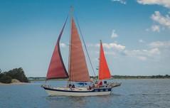 Under Sail Taylors Creek (Marc_714) Tags: sky clouds sailboat boat nc sailing sails northcarolina beaufort marc714