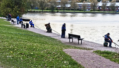 Criminals (ri Sa) Tags: trees sea men water grass buildings finland fishing helsinki path benches fishers
