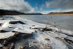 SJ7_6088 (glidergoth) Tags: lake ice river scotland spey