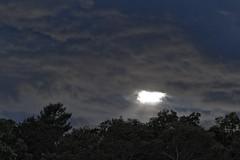 Light Vortex (brucetopher) Tags: light cloud sun sunlight white vortex storm sunshine clouds grey bright cloudy beam whitelight sunray beammeup approachingstorm followthelight cloudpatterns rayofsunshine