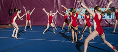 2016AGFGymfest-0289 (Alberta Gymnastics) Tags: edmonton gymnastics alberta federation performances recreational 2016 gymfest