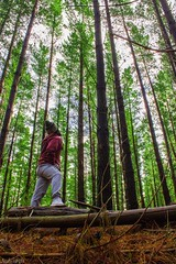 Craig Kuitpo (justinedwards4) Tags: sky man tree green nature leaves standing forest pose walking sticks log long branch outdoor brother ground hike trunk jumper bro beanie treck trackies kuitpo