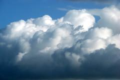 impressive clouds 3 (lisafree54) Tags: blue sky white nature clouds free cumulus cco freephotos